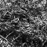 A pile of metal monochrome springs Royalty Free Stock Image