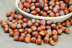 Pile of mixed  hazelnuts Stock Photo