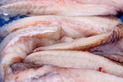 A pile of monkfish filets on ice. A pile of chilled monkfish seen on ice with blue background at fish market royalty free stock photos