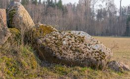 A pile of moss-covered stones on the edge of a field close up stock image