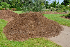 Pile of mulch Stock Photo