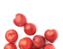 Pile of multiple red plums  Royalty Free Stock Photo