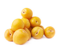 Pile of multiple yellow plums isolated Stock Images