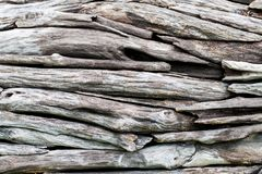 A pile of natural wooden logs. Background Stock Image