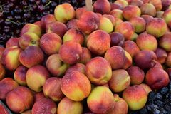 Pile of nectarines grocery shop fruit Stock Photo