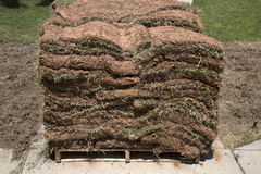 Pile of new lawn sod. Background stock image