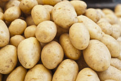 Pile of new potatoes for sale. To the market royalty free stock photo