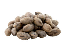 Pile of Newly Picked Pecan Nuts on White Royalty Free Stock Photos