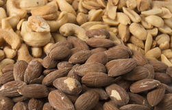 Pile of Nuts - Angled Stock Image