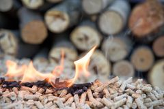 Oak pellets in flames. Pile of oak biomass pellets in fire stock photography