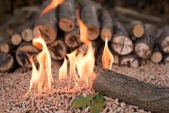 Pile of oak Wooden biomass. Wood, pellets, leaf stock photos
