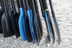 A pile of oars on the beach royalty free stock image