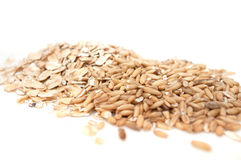 Pile of Oat Grains and Oat Flakes Royalty Free Stock Photo