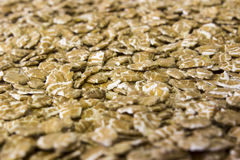 Pile of oatmeal flakes Royalty Free Stock Photography