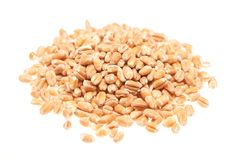 Pile of oats on the white background Royalty Free Stock Photo