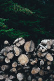 A Pile Od Brown Firewood Stock Images