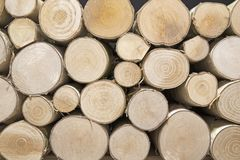 Pile Of Birch Wood, Can Be Used As Background Royalty Free Stock Photos