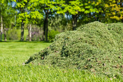 Free Pile Of Cut Grass In Park Royalty Free Stock Images - 66289489