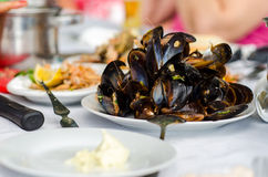 Pile Of Mussels Royalty Free Stock Images