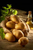Pile Of Potato Royalty Free Stock Photos