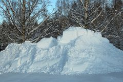 Pile Of Snow In Front Of Forest A Sunny Winter Day Royalty Free Stock Photo