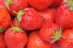 Free Pile Of Strawberries Royalty Free Stock Images - 19579299