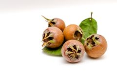 Free Pile Of Walnuts And Medlars On A White Background Stock Photos - 131525353