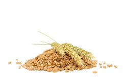 Pile Of Wheat Grains With Ears Stock Image