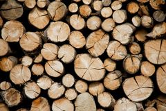 Pile Of Wood Logs Storage For Industry. Stock Photography