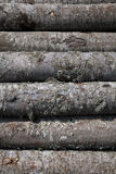 Pile Of Woods Royalty Free Stock Image