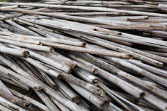 Pile old bamboo Stock Photography