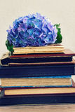 Pile of old books with flowers Stock Photo