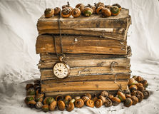Pile of old dusty books with broken pocket watch and acorns on dirty white cloth Stock Images