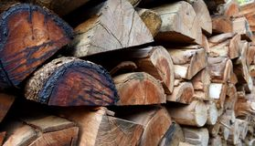 Pile of old firewood Stock Photography