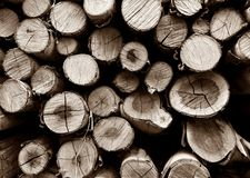 Pile of old firewood Royalty Free Stock Image