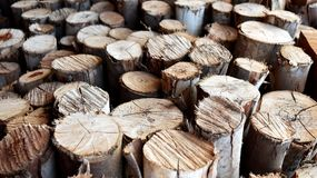 Pile of old firewood Stock Photo
