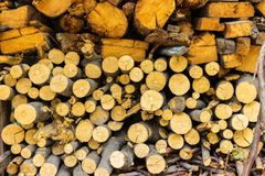 pile of old firewood for background. Chopped fire wood pile prepared for winter Royalty Free Stock Photos