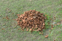 Pile of old red bricks on grass Stock Photo