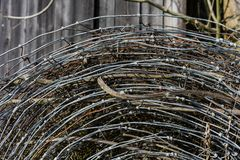 Pile of old rusty and new barbed wire royalty free stock photos