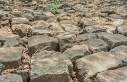 Pile of old stones. Large pile of old stones. The paved walkway is a small tree up on the rocks Royalty Free Stock Photography