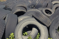 Pile of old used tires stocked for recycling Royalty Free Stock Images