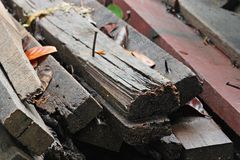 Pile of old wood decay. Stock Photo