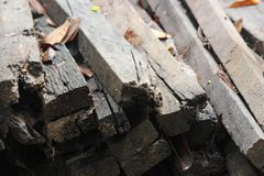 Pile of old wood decay. Stock Images