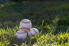 Pile of old, worn baseballs sitting in the grass on a warm, sunny afternoon