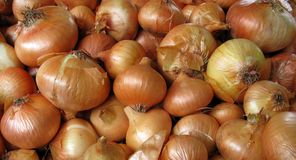 Pile of onions Stock Photos