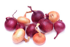 Pile of onions. Pile of fresh onions  isolated on a white background Royalty Free Stock Image
