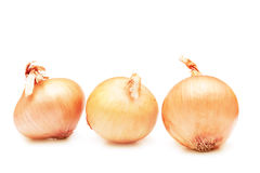 Pile of onions. Stock Photo