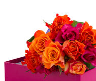 Pile  of orange and pink  roses Stock Photography
