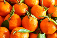 Pile of oranges Royalty Free Stock Photography
