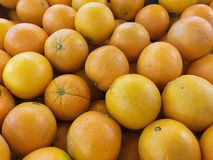 A pile of oranges. Stock Images